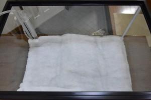 白い濾過シートを敷いた後の写真
